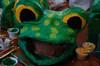 Stus_frog_head